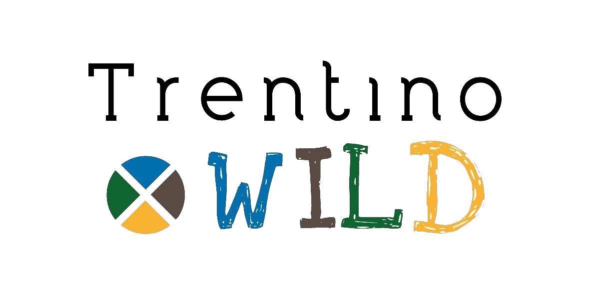 Logo Wild ok colori-01 tutto nero trasparente copia